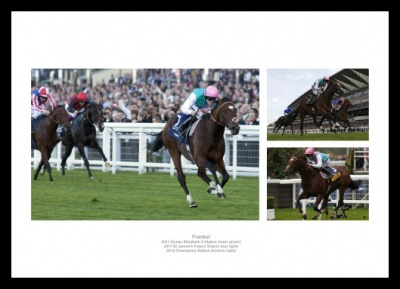 Frankel Print Montage Horse Racing Photo Memorabilia