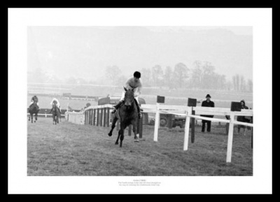 Arkle Photo - 1966 Cheltenham Horse Racing Print Memorabilia