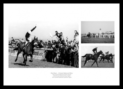 Red Rum Horse Racing Legends Photo Memorabilia