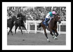 Frankel Print - Horse Racing Legends Spot Colour Photo