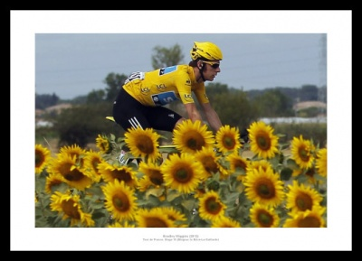 Bradley Wiggins  'Sunflowers' Tour de France Photo Memorabilia