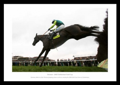Denman 2008 Cheltenham Gold Cup Photo Memorabilia