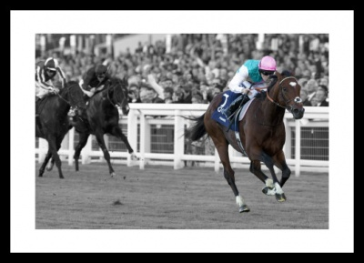 Frankel Horse Racing Legend Spot Colour Photo Memorabilia