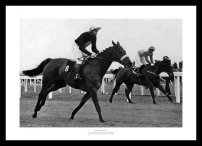 Red Rum First Grand National Win in 1973 Photo Memorabilia