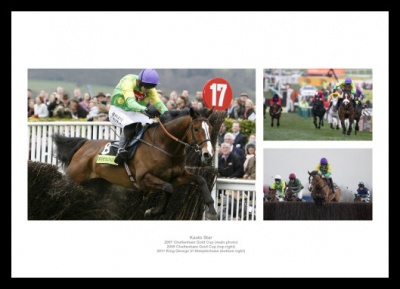 Kauto Star Horse Racing Legend Photo Memorabilia