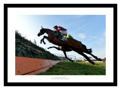 Tiger Roll Jumping at 2019 Grand National Photo Memorabilia