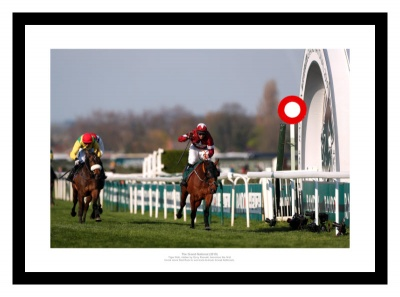Tiger Roll Passes Winning Post 2019 Grand National Horse Racing Photo