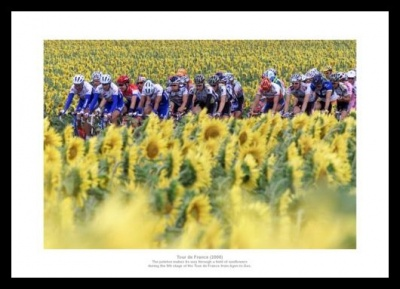 Tour de France Peloton 'Sunflower Field' Photo Memorabilia