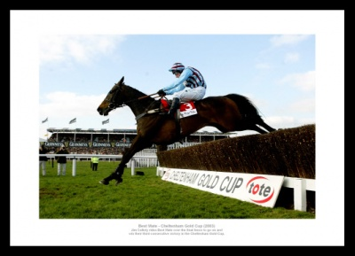 Best Mate 2003 Cheltenham Gold Cup Horse Racing Photo Memorabilia