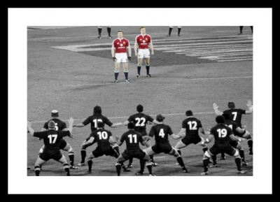 British & Irish Lions Facing the Haka Spot Colour Photo Memorabilia