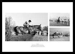 Arkle Horse Racing Legend Photo Memorabilia