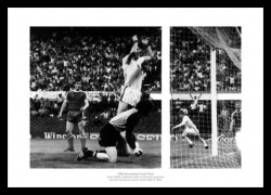 Aston Villa 1982 European Cup Final Peter Withe Winning Goal Photo