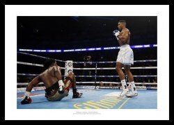 Anthony Joshua 2016 IBF World Champion Boxing Photo Memorabilia