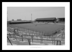 The Goldstone Ground Brighton & Hove Albion Photo