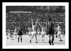 Celtic 1967 European Cup Final Whistle Celebrations Photo