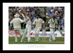Andrew Flintoff Pontings Wicket 2005 Ashes Cricket Photo Memorabilia