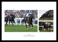 Frankel Horse Racing Legend Photo Memorabilia